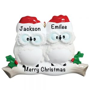 Owl Couple Personalized Christmas Ornament - Blank