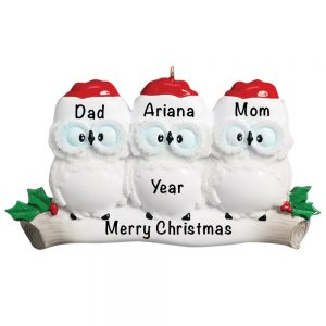 Owl Family of 3 Personalized Christmas Ornament
