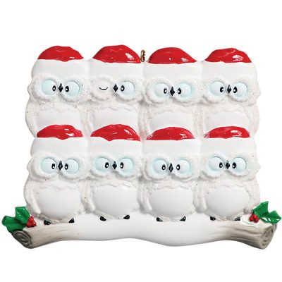 Owl Family of 8 Personalized Christmas Ornament - Blank