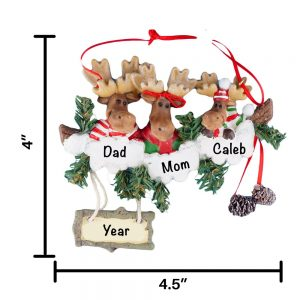Moose Family of 3 Personalized Christmas Ornament
