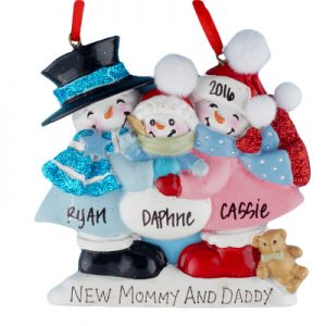 New Mommy and Daddy Snow Family Pregnant