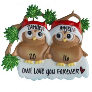 Brown Owl Couple Personalized Ornament