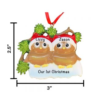 Brown Owl Couple Personalized Christmas Ornament