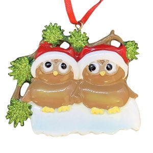 Brown Owl Couple Personalized Christmas Ornament - Blank