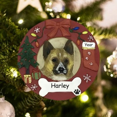 Personalized Akita Christmas Ornament