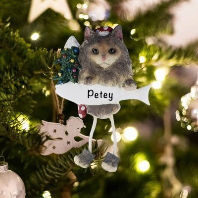 Personalized Mainecoon Cat Christmas Ornament