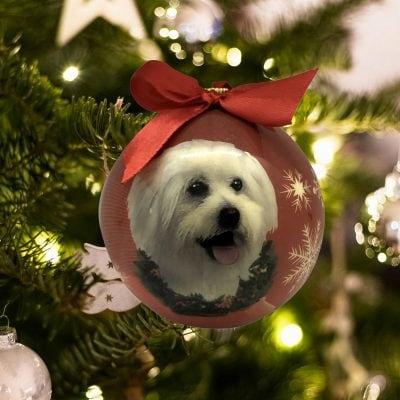 Personalized Maltipoo Christmas Ornament