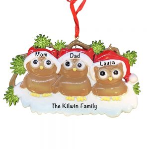 Brown Owl Family of 3 Personalized Christmas Ornament