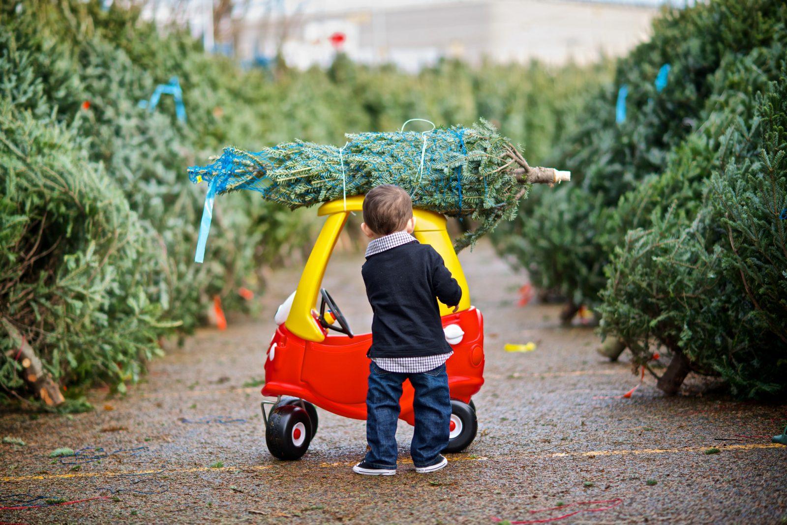 Kid Christmas Tree Car Myornament Holiday Traditions